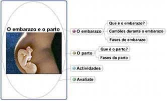 Mapa de ideas sobre o embarazo e o parto.