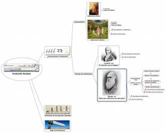 Mapa de ideas sobre evolucionismo