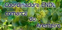 Este é o blogue da Coordinadora de EDNL da Comarca do Arenteiro