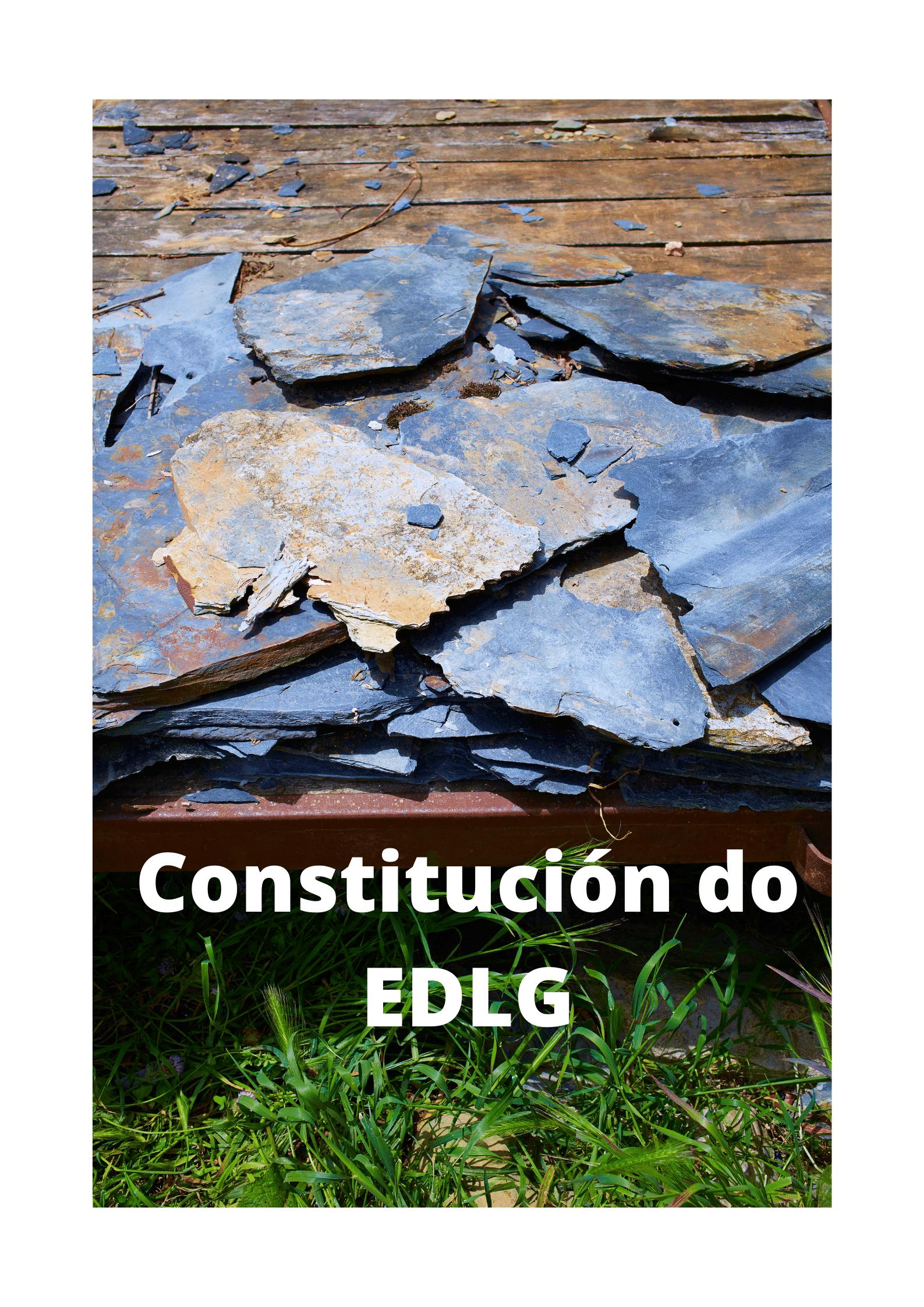 Constitución do EDLG