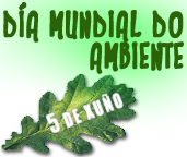 D_Medio