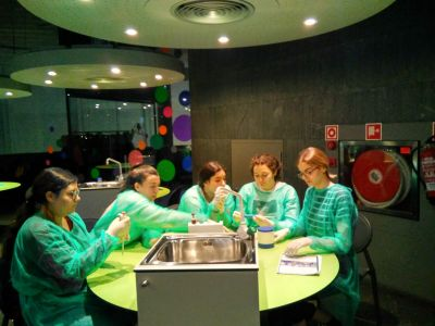 laboratorio aberto domus