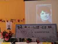 Rosalía do século XIX ao XXI Libre o meu pensamento!