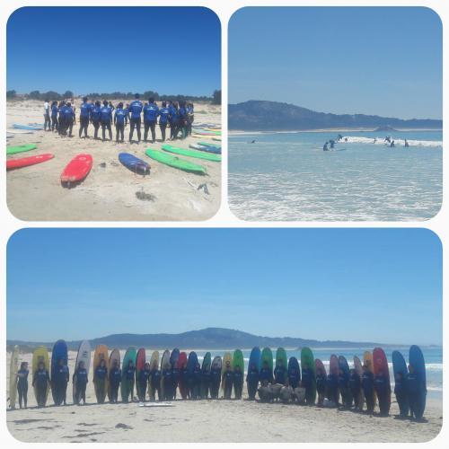 SURF 2019.jpg