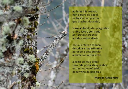 http://www.edu.xunta.es/biblioteca/blog/?q=node/1180
