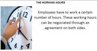 WORKING HOURS AND SALARY